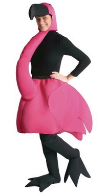 funny Flamingo Costume