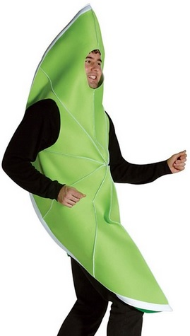 lime wedge funny fruit costume