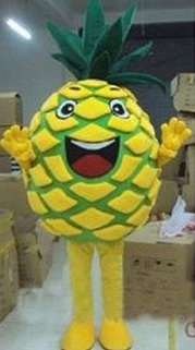 cool pineapple costume