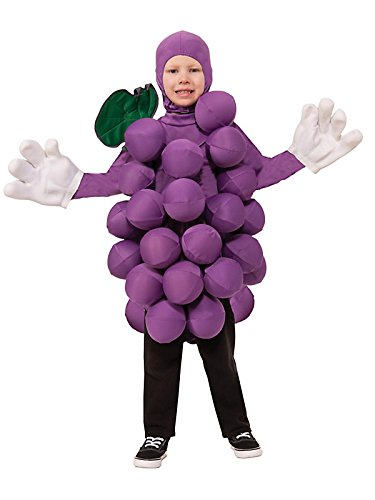 Kid's Purple Grape Costume