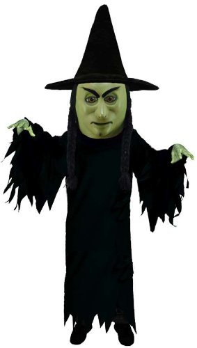 Witch Lightweight Mascot Costume